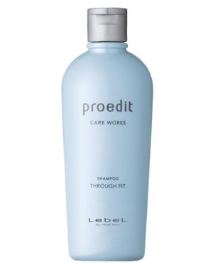Lebel Proedit Through Fit Shampoo